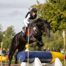 Le Lion d'Angers – Eventing World Breeding Championship 2019